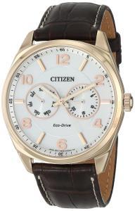 Citizen Men's AO9023-01A Dress Analog Display Japanese Quartz Brown Watch