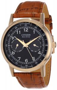 Đồng hồ Citizen Men's AO9003-08E Stainless Steel Eco-Drive Watch with Leather Band