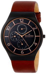 Đồng hồ Skagen Men's SKW6117