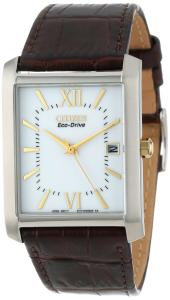 Đồng hồ Citizen Men's BM6789-02A  Eco-Drive Brown Leather Strap and Stainless Steel Watch