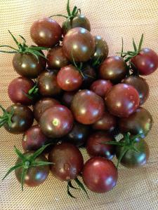Chocolate Cherry Tomato Seeds - 150 mg - GARDEN FRESH PACK!