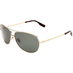 Hugo Boss 0396/P/S Men's Polarized Aviator Full Rim Outdoor Sunglasses - Light Gold/Green