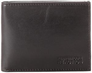 Kenneth Cole REACTION Men's Passcase Wallet