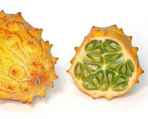 Hạt giống Horned Cucumber (Cucumis metuliferus)-Organic(20 Seeds)