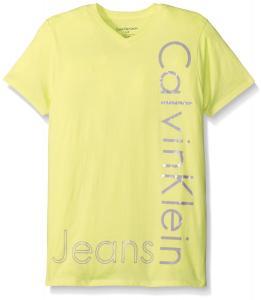 Calvin Klein Big Boys' New Icon V Neck Short Sleeve